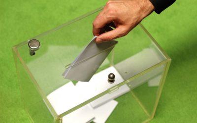Hervorragendes Ergebnis für Leimens GRÜNE bei der Kreistagswahl
